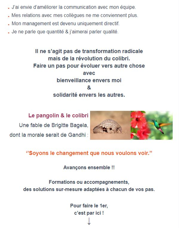 bagela-formation-vente-confinement-monde-apreste-pangolin2-covid-monde-apres-confinement-pandemie
